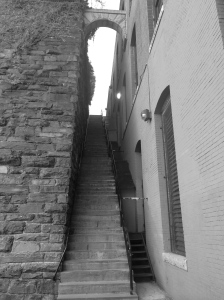 The Exorcist steps at dusk